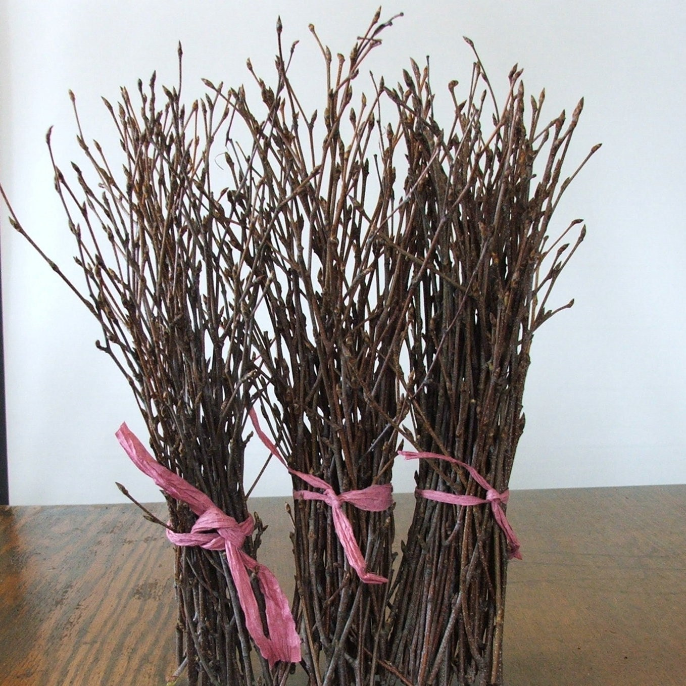 Natural birch twigs rustic decor event centerpieces for Northwoods decor