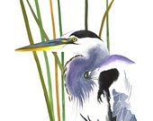 Limited Edition GICLEE PRINT /  Watercolor Painting of Great Blue Heron