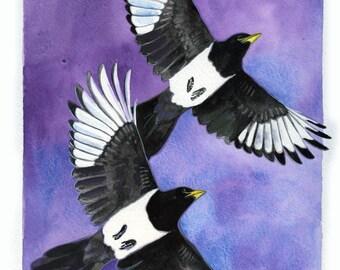 "ORIGINAL Watercolor Bird Painting / ""Purple Haze"" /  Yellow-billed Magpies"