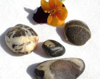Spanish beach rocks, 4 Mediterranean beach pebbles,Original smooth stones by Oceangifts