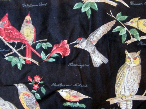 RESERVED for kerry - fabric - BIRD species pattern on black background - 100% cotton - by the yard