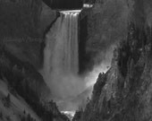 "Landscape Photography, Nature Photography, Grand Canyon of Yellowstone, Black and White Photograph, ""Lower Falls"", 16x20"" Fine Art Print"