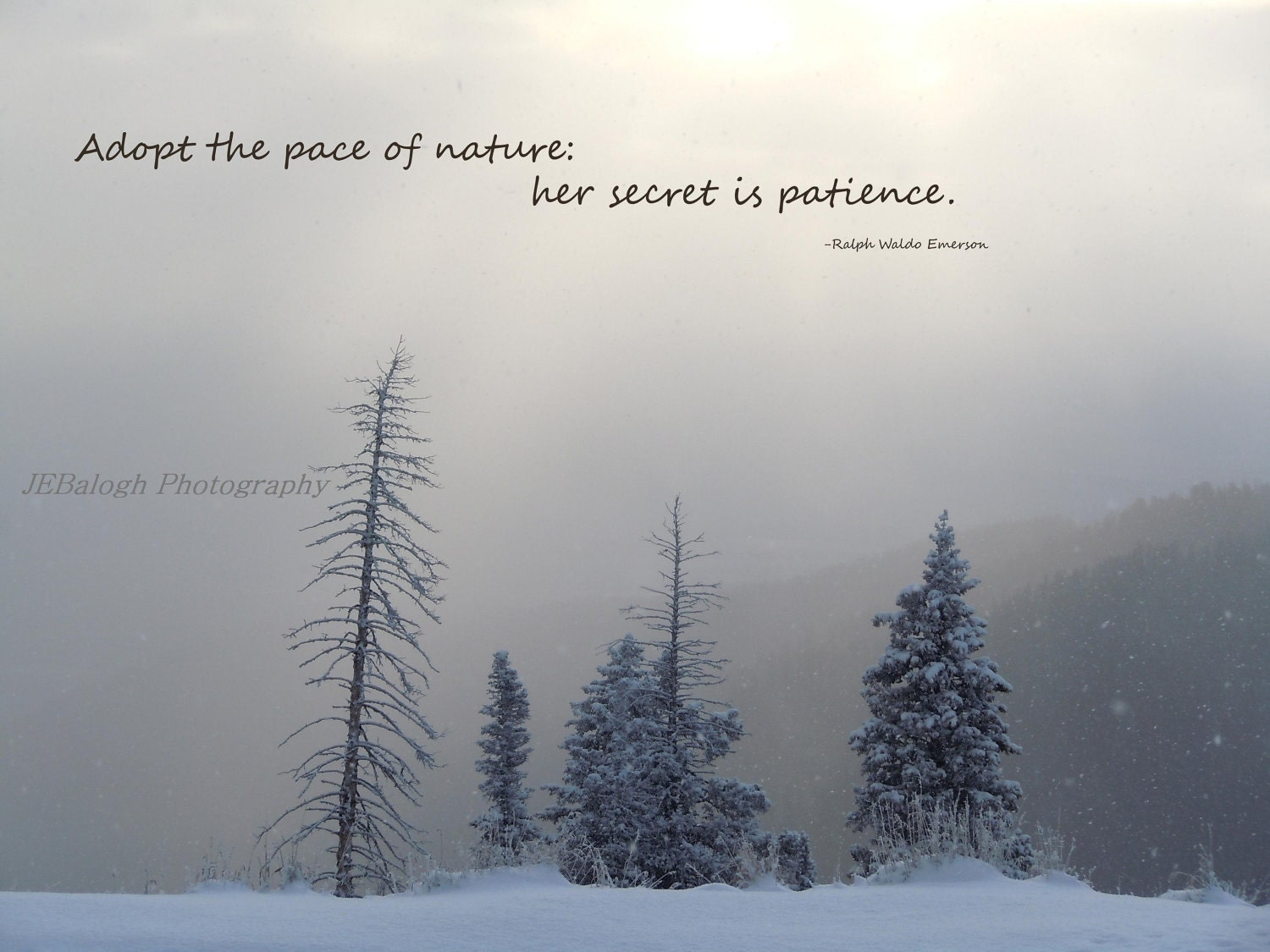 Quotes Winter Nature Photography Inspirational Quotes Winter Wonderland