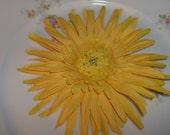 Yellow Gerbera Daisy Hair Clip