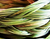 Sweetgrass Braid - Wild Crafted