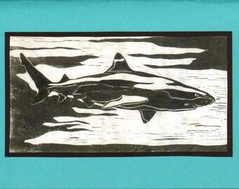 5 Handmade Shark Cards (Turquoise)