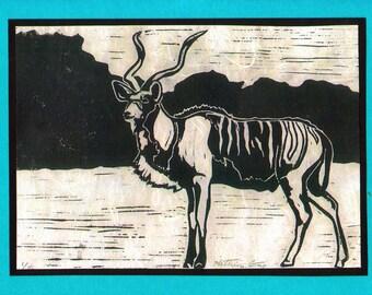 5 Greater Kudu Notecards