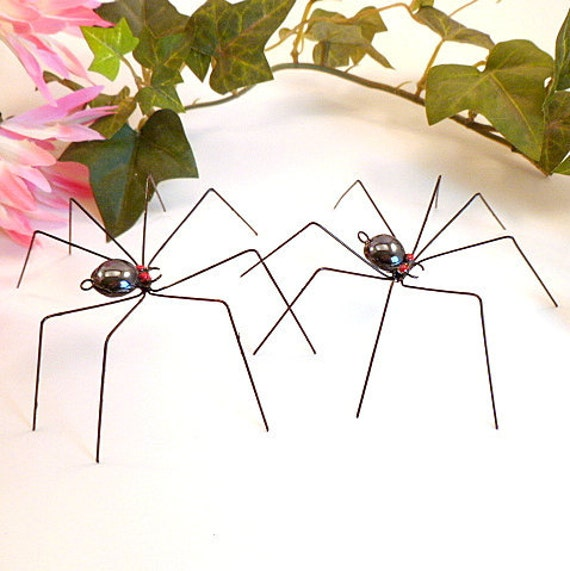 Two Hanging Black Spiders Daddy Long Legs