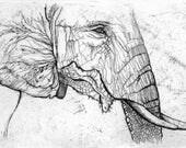 An elephant, print