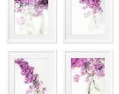 LILAC BLOSSOM - four 5x7 prints