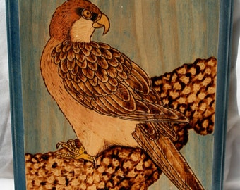 20% OFF Intense Hawk Wood Wall Plaque Pyrographed Painted