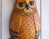 Owl Vintage wall hanging