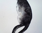 Two-tailed cat - original watercolour painting