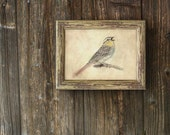 Print From My Original Illustration Chirping Sparrow