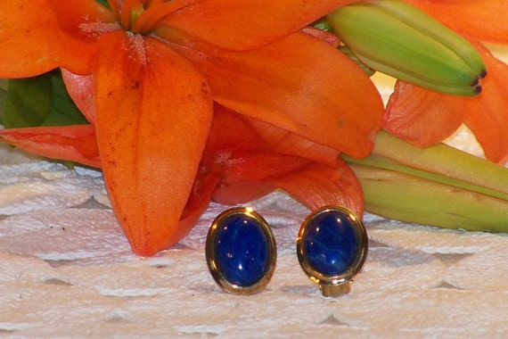 Professional Vintage Lapis and Silver Tone Clip Earrings