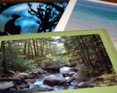 Peaceful Easy Feeling - Set of 3 Tranquil Photo Note Cards