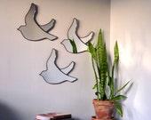 Birds Mirrors Trio of