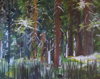Luscious Light, Original Oil Painting, 30x15