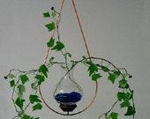 Teardrop Plant Rooter