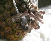 Summer Seashell and Silver Necklace - OOAK
