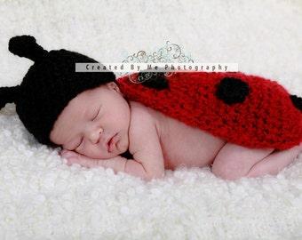 Ladybug  Newborn Photo Prop