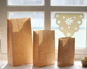Basic Kraft Paper Bags - M (30 bags)
