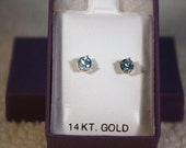 14k Gold Blue Swiss Topaz  Earrings
