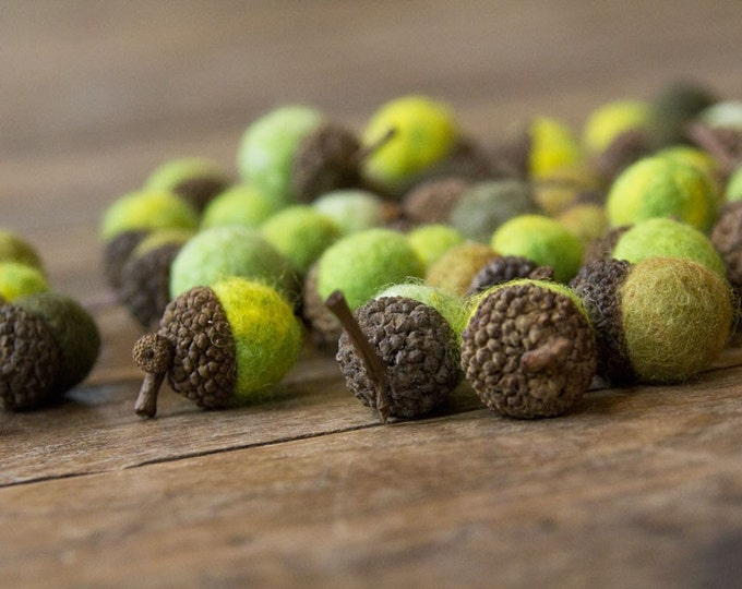 Set of 12 SHADES OF GREEN Wool Felted Acorns- As seen in Southern Living magazine
