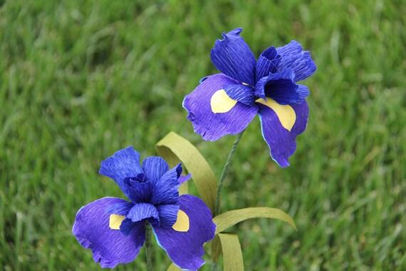 Blue Iris Flowers  - set of 2 -- crepe paper flowers