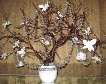 Crystal Manzanita Tree