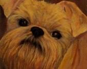 Brussels Griffon Print - Brussels Griffon Art for 8x8 Frame - Monkey Dog- 10% Benefits Animal Charities