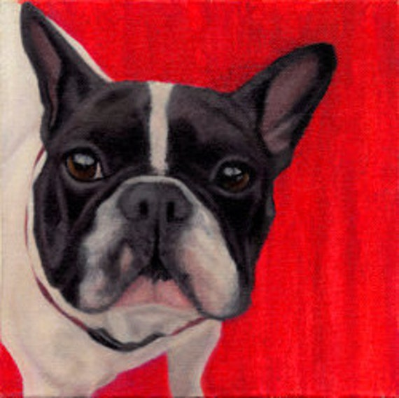 French Bulldog Print - Framed 12 x 12 - Frenchie - French Bull Dog - White and Black Bulldog - 10% Proceeds to Animal Rescue