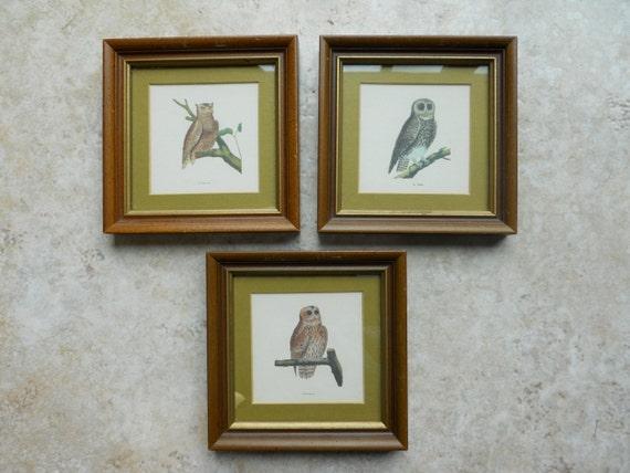 Vintage Framed Owl Prints Set of 3