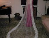 Vintage Ivory Alencon Lace Mantilla Veil cathedral length