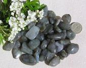 12 Labradorite Crystal Tumblestones, Chakra Crystals, Crystal Collection, Meditation Stone, Sagittarius, Capricorn, Energy Stone