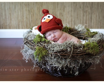 Knit Newborn Baby Bird Hat, Knitted Infant Tie Top Hat, Spring Robin Photo Prop, Cardinal, Custom Colors Avail,Newborn Baby- Adult