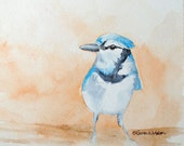 Bluejay Original Watercolor Painting Blue Bird - SusanWindsor