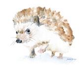 Hedgehog Watercolor Note Card Set