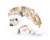 Watercolor Painting Hedgehog Giclee Print - 10 x 8 - Hedgehog Art - Woodland Animal - 11 x 8.5