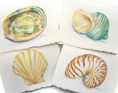 Watercolor Seashell Note Cards Set