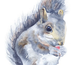 Squirrel Watercolor Note Card Set