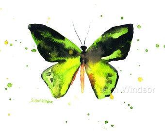 Green Butterfly Watercolor Painting - 10 x 8 - Fine Art Giclee Print Reproduction 11 x 8.5 - Bright Green