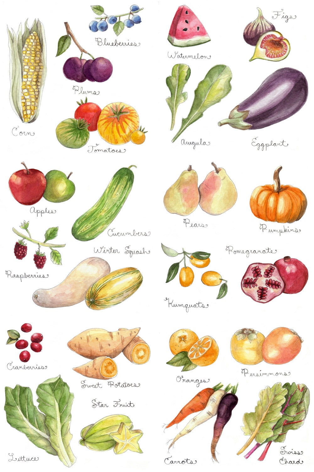 Bright image with printable pictures of vegetables