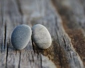 Pebble ear studs on sterling silver posts / beach stone studs / rock earrings ready to ship