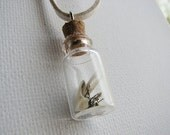 Glass Bottle Necklace Steampunk Vial