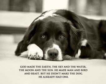 Dog Photography, Quote Print, Border Collie, Native American, Eyes, God