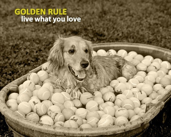 Golden Rule - Live What You Love (8 x 10 Print)