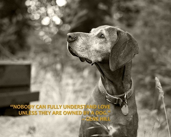 Nobody Can Fully Understand Love Unless They Are Owned By A Dog - 8 x 10 Print