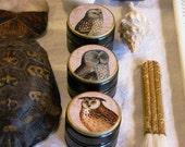Owl Decoupage Box Set