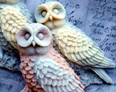 Turkish Coffee Owl Family soap set